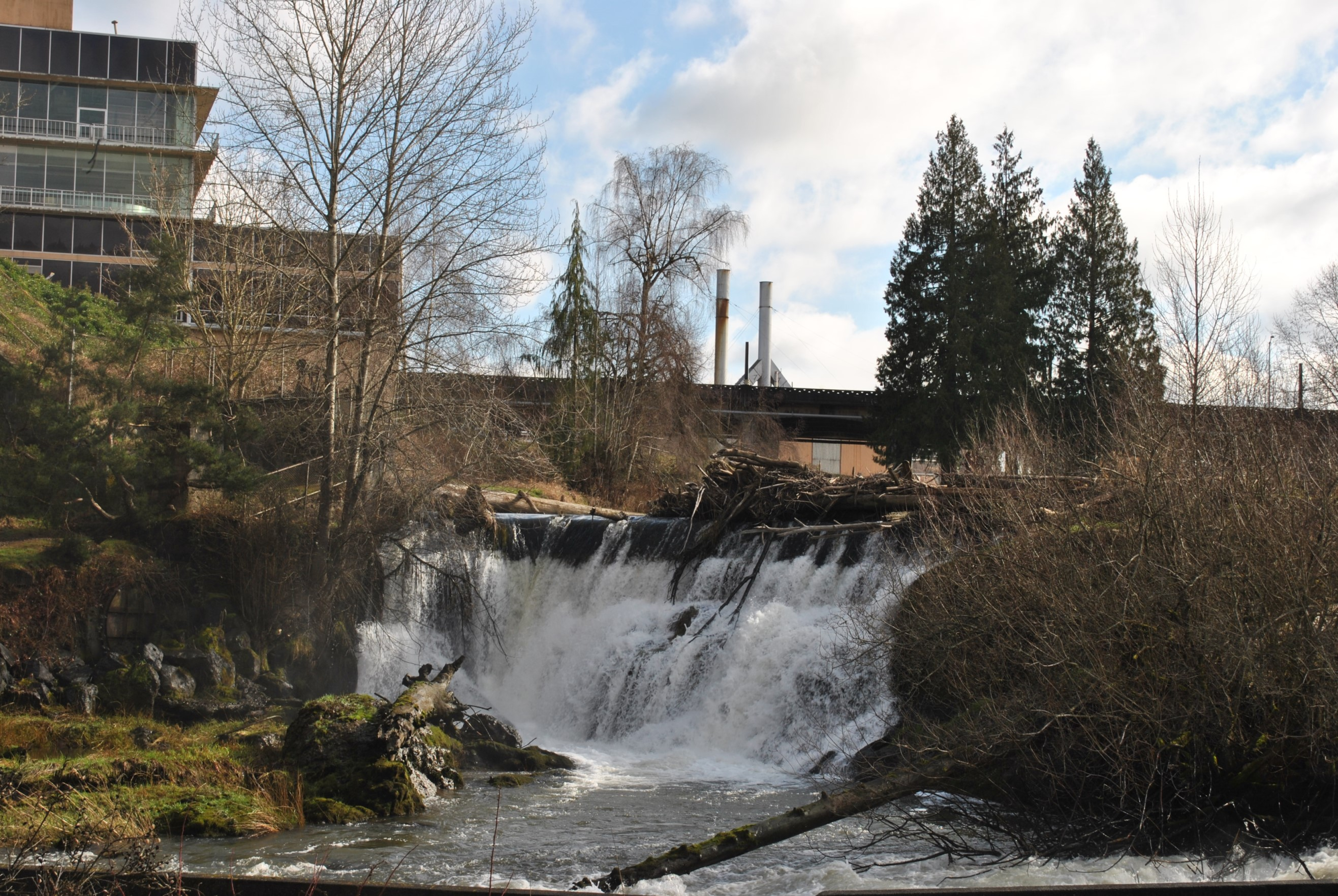 A waterfall is seen in the foreground with the old Olympia Brewery building in the background.