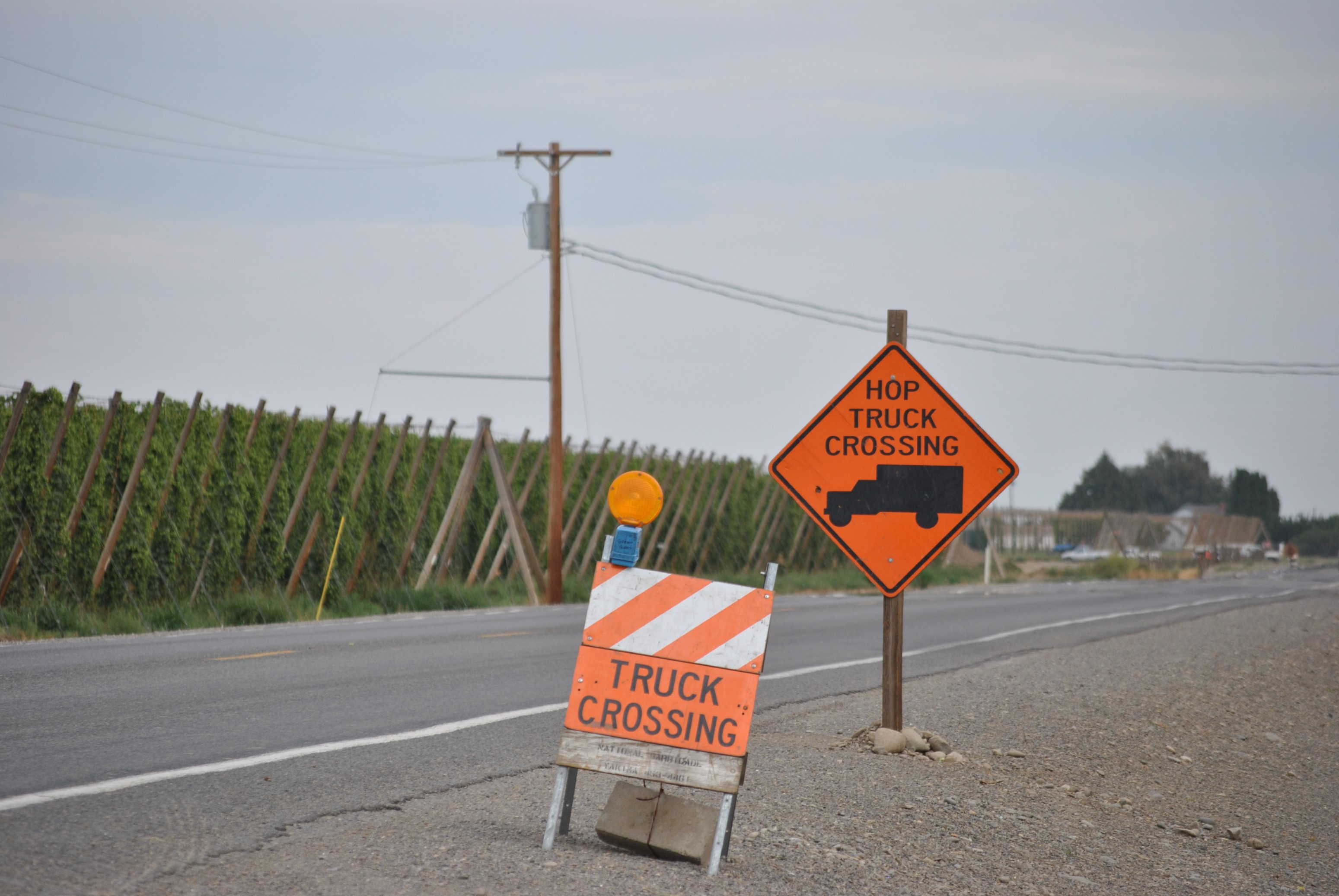 "An orange caution sign with a picture of a hop truck reads, ""Hop Truck Crossing."" Hops are growing in the background."